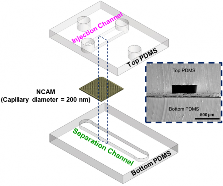 microfluidic device blowup